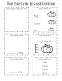 Our Pumpkin Investigation