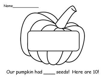 Our Pumpkin Seeds