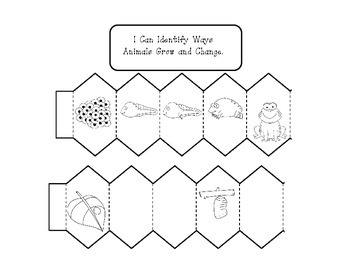 Our World:   Plant and Animals First Grade Science Interactive Notebook