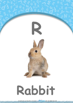Our World - Submarines & Boats : Letter R : Rabbit - Nursery (2 years old)