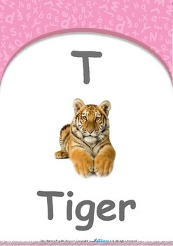 Our World - Trains : Letter T : Tiger - Pre-Nursery (1 year old)