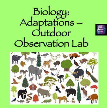 Adaptations: Outdoor Assignment