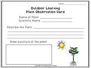 Outdoor Learning Plants Observation Card