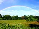 Over the Rainbow program cover