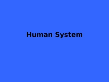 Overview of the Human Systems