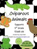 Oviparous Animals: 5th Grade STAAR-Alt