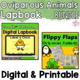 Oviparous Animals Activities Interactive Notebook Digital