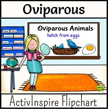Image of: Engaged Oviparous Animals Flipchart Lesson Teachers Pay Teachers Oviparous Animals Flipchart Lesson By Digital Den Tpt