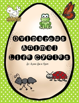 Oviparous Animals Life Cycles