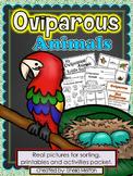Oviparous Animals