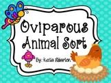 Oviparous Animals Sort