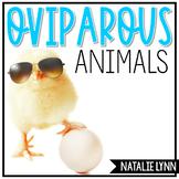 Oviparous Animals Unit