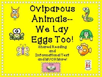 Oviparous Animals - We lay eggs too!