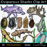 Oviparous Sharks & Eggs {PaezArtDesign}