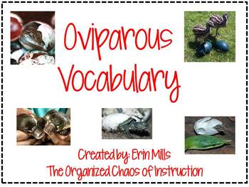 Oviparous Vocabulary