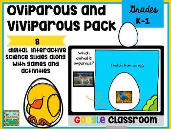 Oviparous and Viviparous Animals Digital Resource and Acti