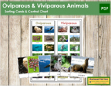 Oviparous or Viviparous Animals: Cards & Chart