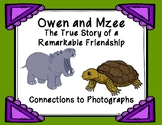 Owen and Mzee Connections to Photographs Graphic Organizer