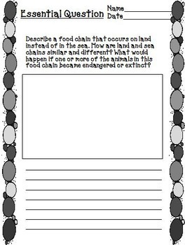 Owen and Mzee   Journeys 4th Grade Unit 5 Lesson 24 Printables