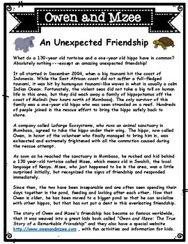 Owen and Mzee Unexpected Friendship Informational Article