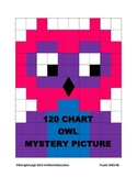 Owl - 120 Chart Mystery Picture!
