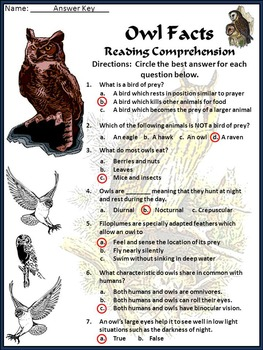 Halloween Activities: Owl Facts Science Activity Packet 4th-6th Grade - Color