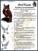 Halloween Activities: Owl Facts Science Activity Packet