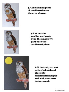 Owl - 3-D Art Activity