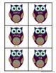 Owl Antonym Match Activity