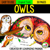 OWLS: A NONFICTION MINI UNIT (Reading, Writing and Craft Activities)