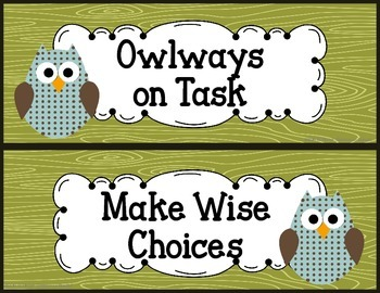 Owl Themed Behavior Clip Chart - two color options