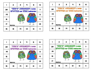Owl Behavior Punch Cards