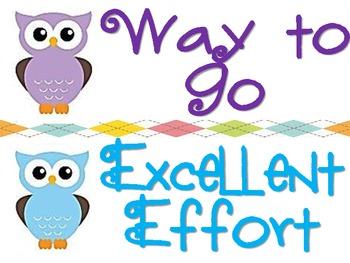 Owl Behavioral Chart