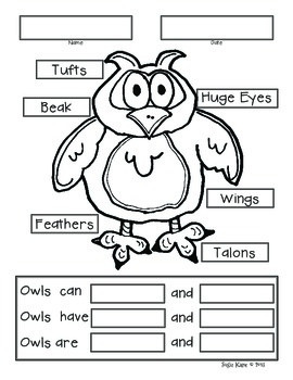 Owl Bulletin Board with Tree Map