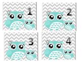 Owl Calendar Dates