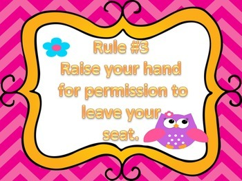 Owl Chevron Themed Class Rules
