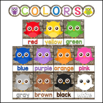 Owl Theme Classroom Colors with Primary Colors