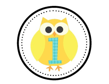 Owl Classroom Decor Yellow, Aqua, and Gray Chevron