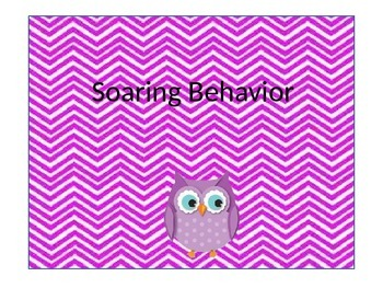 Owl Classroom Management Behavior Chart