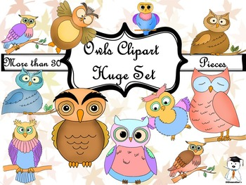 Lovely Owl Clip Art - Huge Set - Over 20 Different Cute Owls
