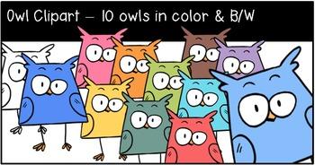 Owl Clipart - 10 color & B/W