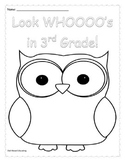 Owl Color Sheet