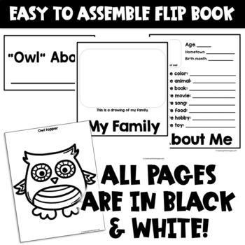 Back to School Craft Activity (Owl Craftivity Flip Book)
