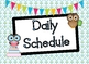 Owl Daily Schedule