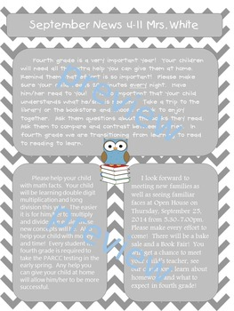 Owl Editable Newsletter