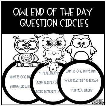 Owl End Of The Day Questions