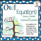 Addition Subtraction & True False Equations - Owl Equations