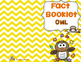 Owl Fact Booklet