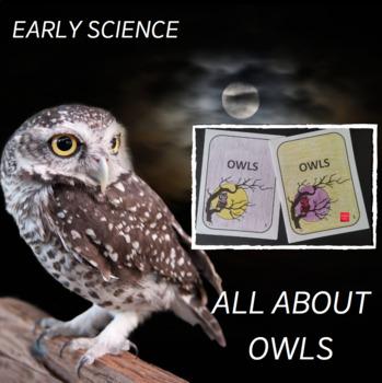 Owl Fact Craft