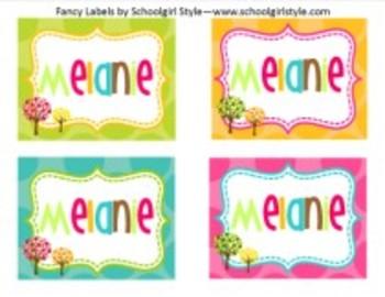Owl Fancy Labels Classroom Decor